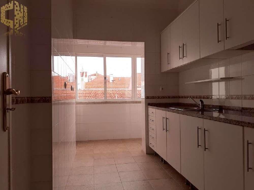 Amadora Amadora apartment picture 193364