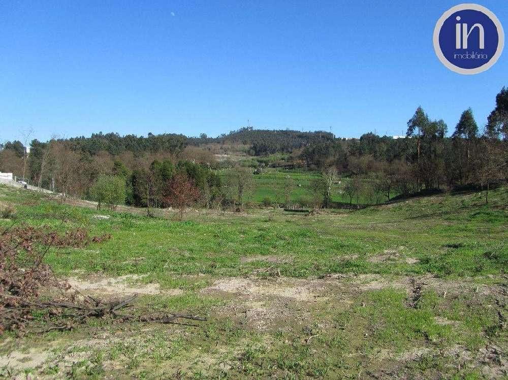 Guimarães Guimarães terrain picture 192436