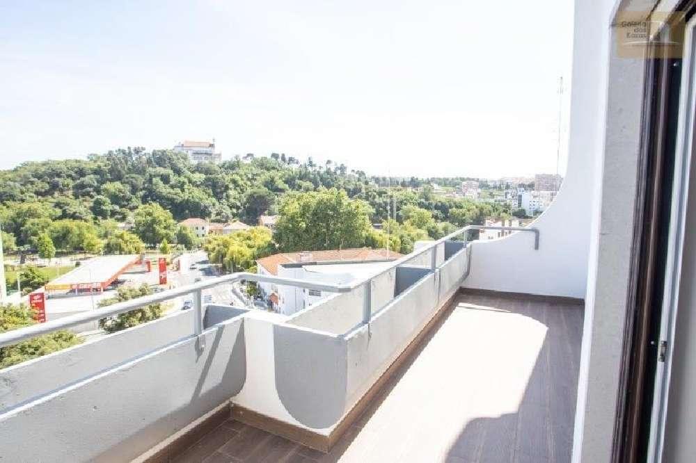 Leiria Leiria apartment picture 191924
