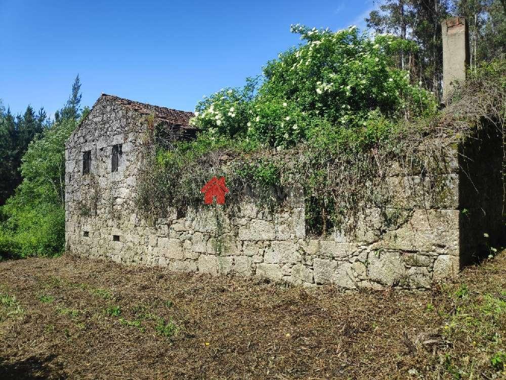 Viseu Viseu villa picture 191995
