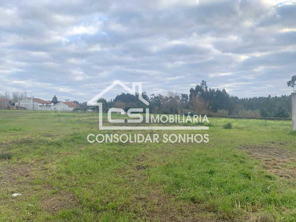 Aradas Arouca 土地 照片 #request.properties.id#