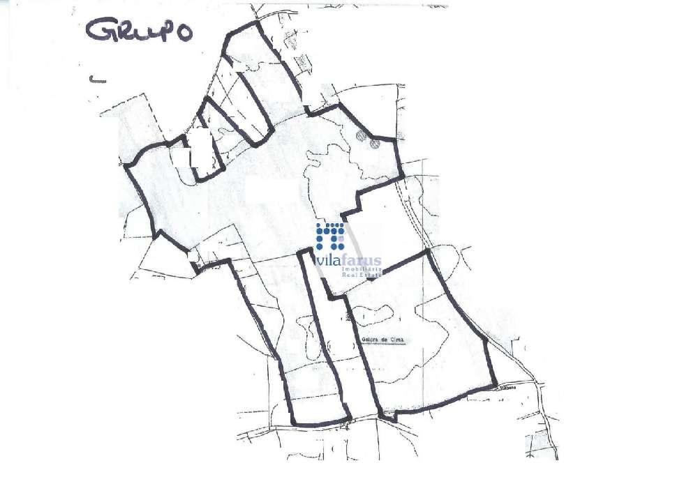 Faro Faro terrain picture 194434