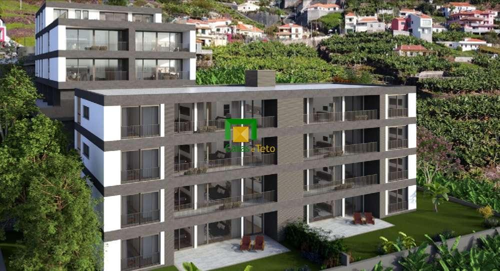 Câmara de Lobos Câmara De Lobos apartment picture 192069