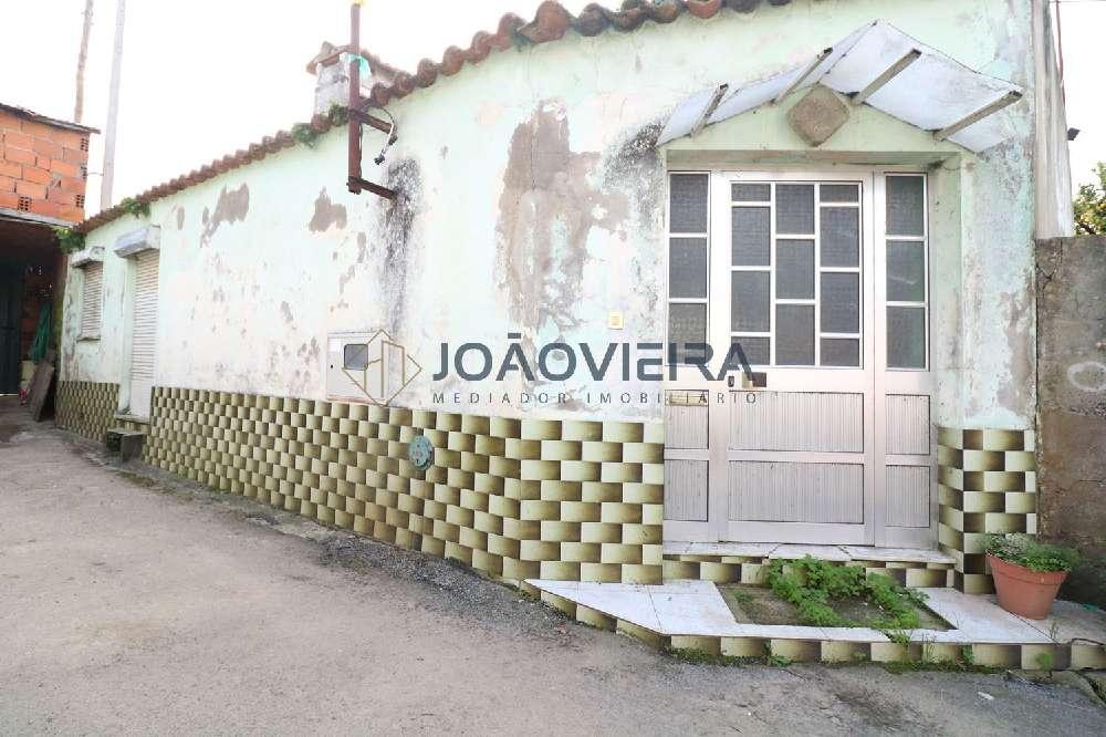 Loure Albergaria-A-Velha Haus Bild 191958