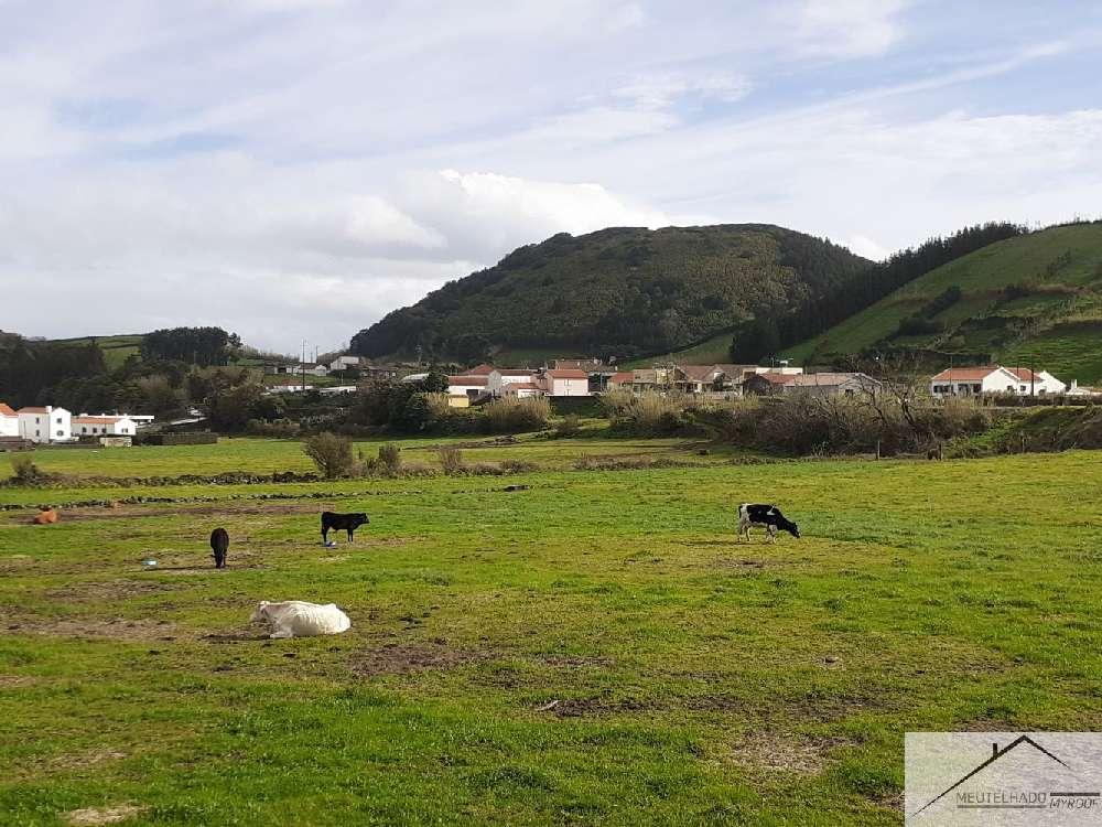 Horta Horta terrain picture 194075