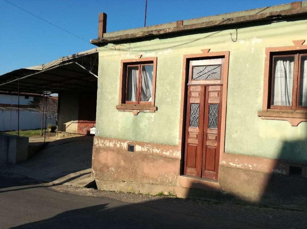 Estarreja Estarreja villa picture 192322