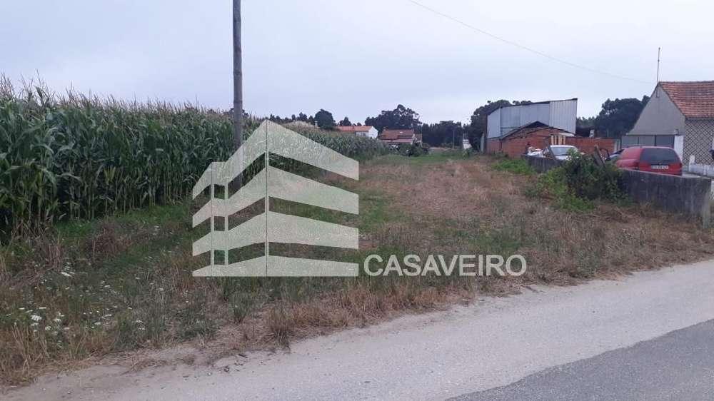 Aveiro Aveiro terrain picture 193358