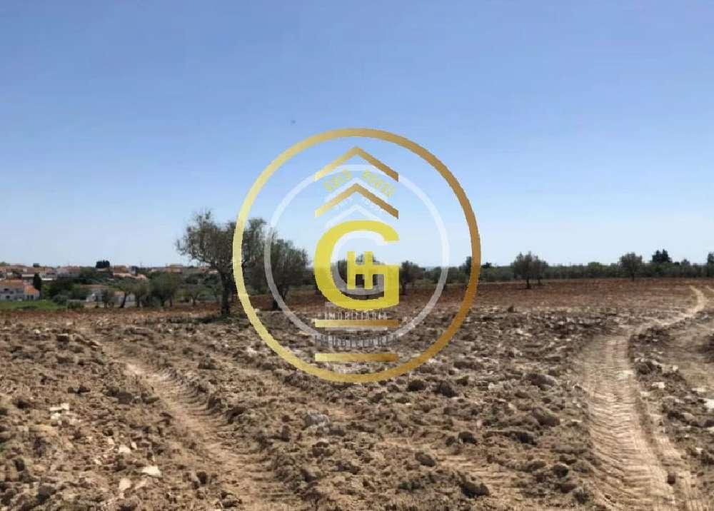 Santarém Santarém terreno foto #request.properties.id#