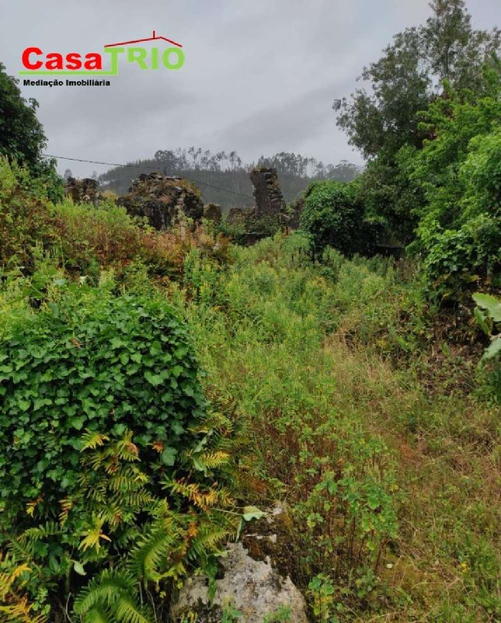 Pombal Pombal 土地 照片 #request.properties.id#