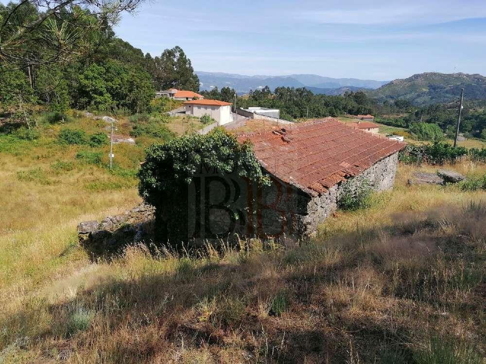 Basto Cabeceiras De Basto terrain picture 193743
