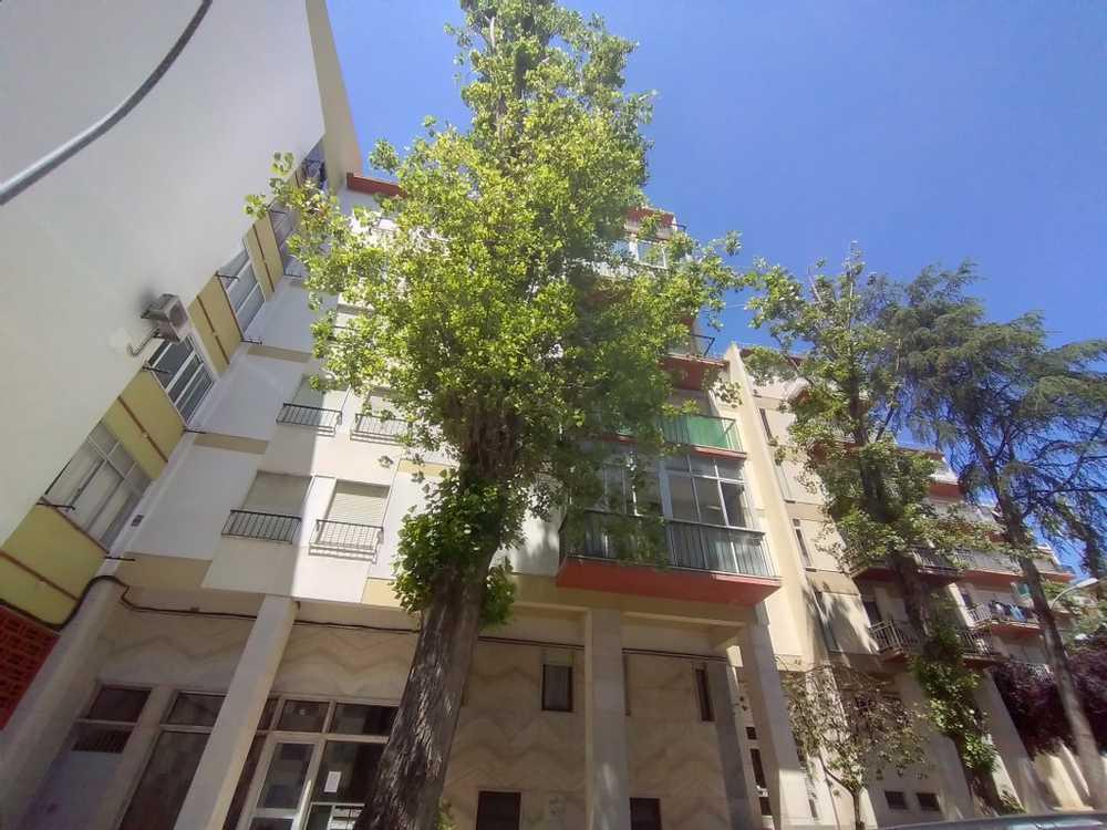 Carnaxide Oeiras 公寓 照片 #request.properties.id#
