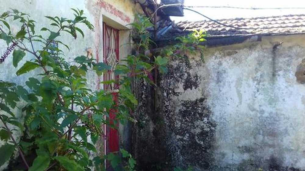 Gandra Paredes maison photo 195264