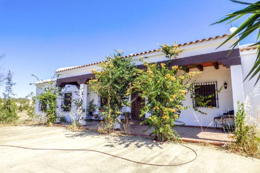 Sil Arcos De Valdevez house picture 195434