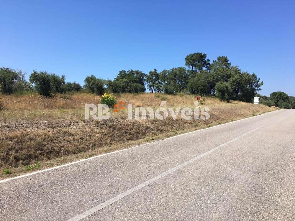 Torres Novas Torres Novas 屋 照片 #request.properties.id#