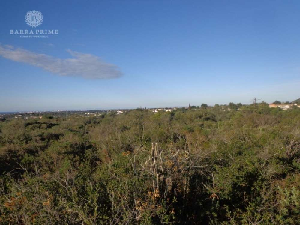 Carvoeiro Lagoa (Algarve) 土地 照片 #request.properties.id#