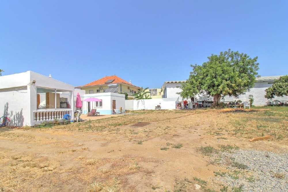 Praia dos Caneiros Lagoa (Algarve) Villa Bild 195552